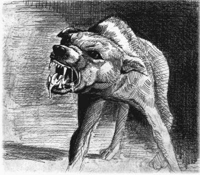 chien-enragé