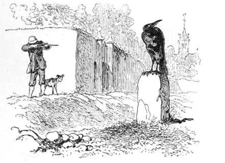 chasseur-corbeau