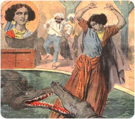crocodiles-siva