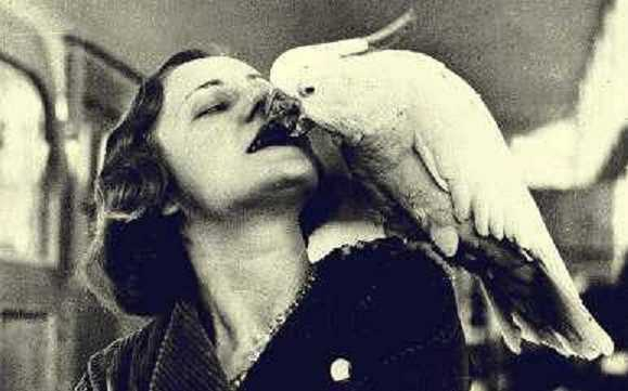 perroquet-femme