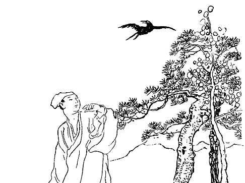 homme-corbeau