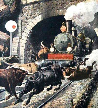 taureaux-locomotive