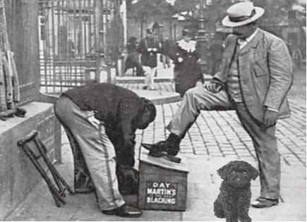 decrotteur-chien