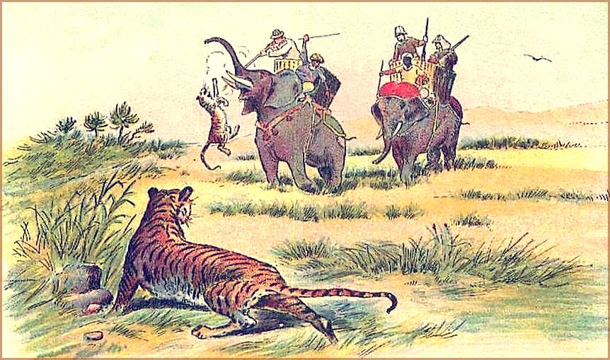 chasse-au-tigre