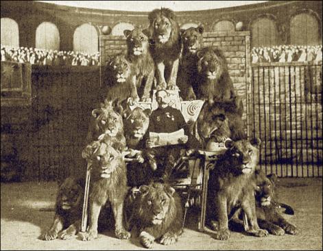 bostock-lions
