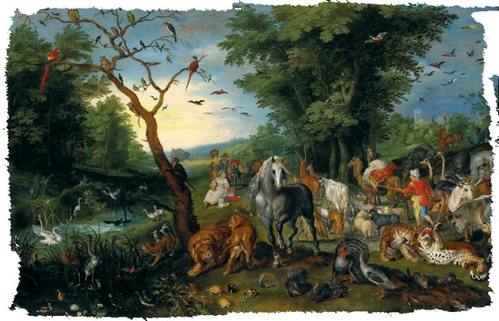animaux Arche