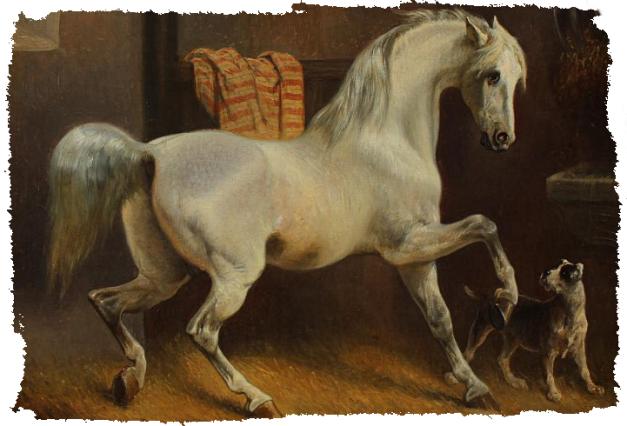cheval-chien