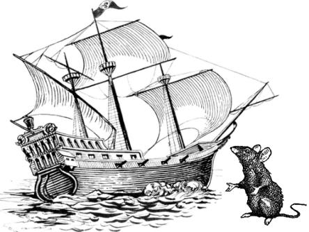bateau-rat